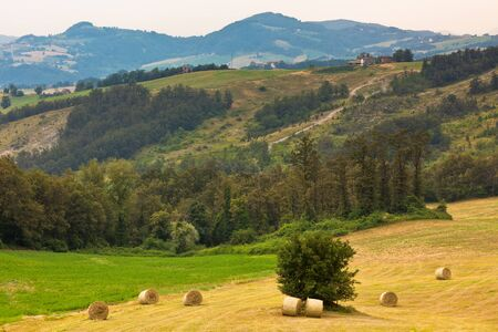 Italian countryside with hay rolls. Horizontal shot photo