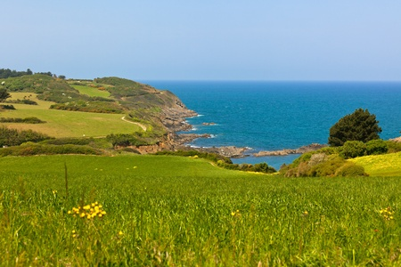 Western Brittany view: ocean, meadows and cliffs. Horizontal shot