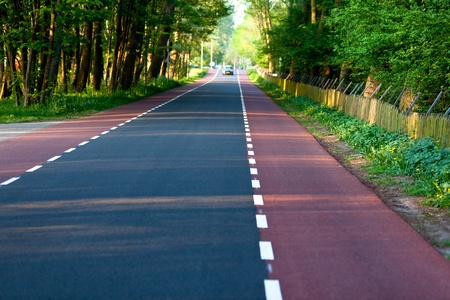 Empty rural road Through Forest and private territory Stock Photo - 14185206