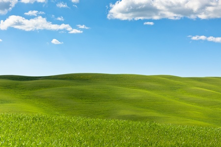 Outdoor green field view with blue sky and clouds  Tuscan Val d photo