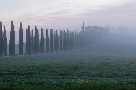 Morning fog view on farmhouse at Valley d?Orcia in Tuscany, Italy.  photo