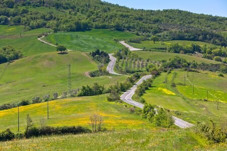 Outdoor green Tuscan view with local curve road. Horizontal shot photo