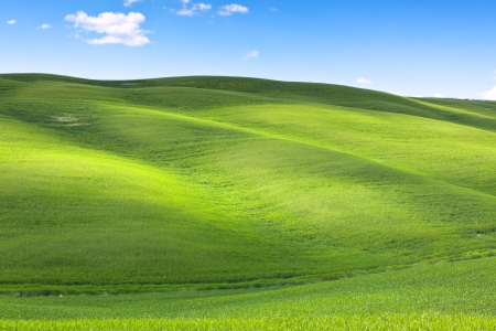 Outdoor green field view with blue sky and clouds.