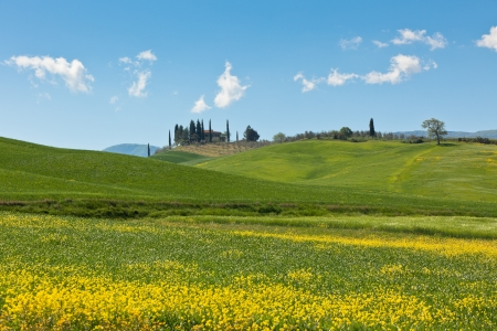 Outdoor Tuscan Val dOrcia green and yellow fields view with blue sky. Horizontal shot photo