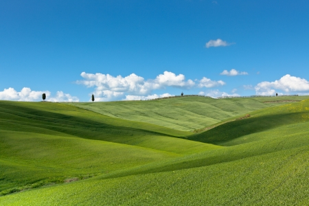 hills land: Outdoor green field view with blue sky and clouds Stock Photo