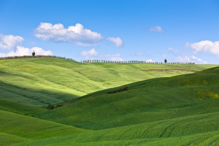 Outdoor Tuscan hills landscape. Horizontal shot