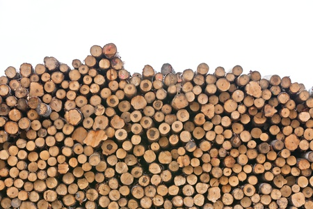 Big pile of logs isolated on white background