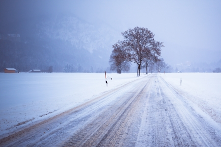 Road and Lonely Tree in Snow Covered Winter Alpin Landscape. Toned image Stock Photo