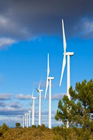 wind turbines: Wind turbines on a wild field in Spain. Vertical shot