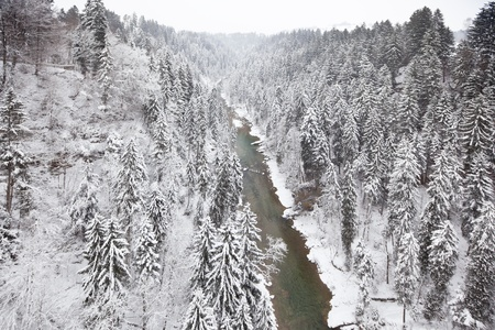 Snowy forest and river view from above Stock Photo - 16149439