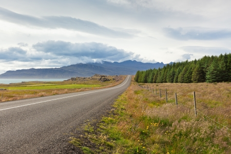 Highway through East Iceland landscape near the sea Stock Photo - 16632408