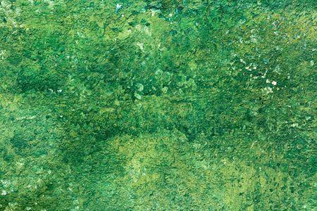 Old Peeling Green Paint Wall Background. Horizontal shot Stock Photo - 16928366