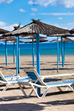 Line of Parasols at Spanish Sand Beach. Vertical shot photo