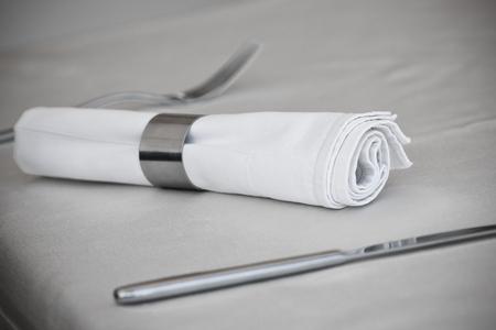 napkin ring: Tableware  Steel Utensil and Napkin Ring  Toned shot Stock Photo