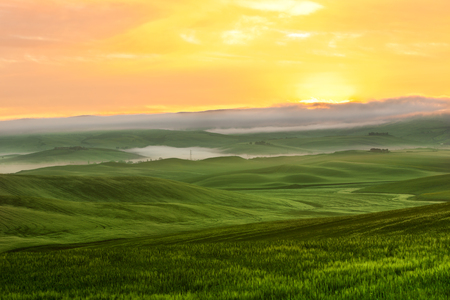Morning fog view on farmland at Valley d Orcia in Tuscany, Italy  Filtered shot photo