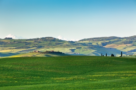 orcia: Outdoor Tuscan Green Hills Landscape  Horizontal shot