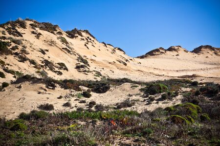 vignetted: Dunes at the Ocean Beach in Western Portugal  Horizontal Vignetted shot