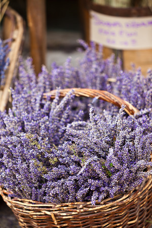Lavender bunches selling in a outdoor french market. Vertical shot with selective focus photo