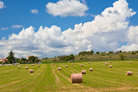 Rural landscape with Farmland and Straw bales in Provence, France