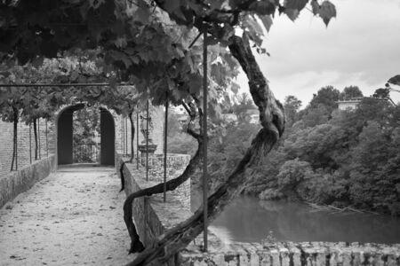 bw: Palais de la Berbie Gardens Alley at Albi, Tarn, France. Filtered bw shot Stock Photo