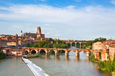 brick: View of the August bridge and The Saint Cecile church in Albi, France. Horizontal shot