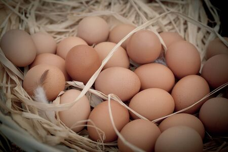 chicken nest: Basket of organic eggs in a rural farmers market. Filtered shot with a selective focus
