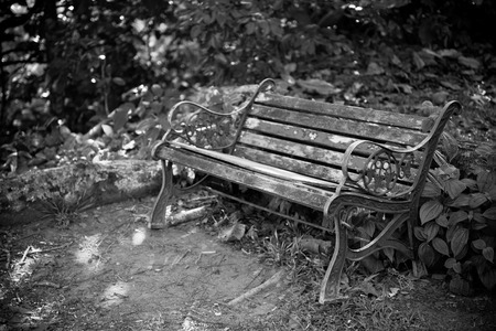 bw: Old wooden bench in a forest. Horizontal bw shot