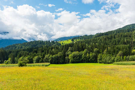 Alpen landscape with a yellow field and beautiful clouds under mountains Stock Photo