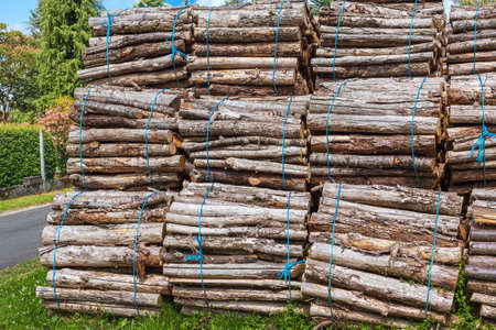 bounded: Big pile of wood logs bundles on a rural background Stock Photo