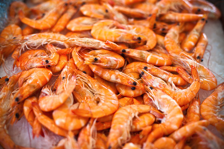 tiger shrimp: Top view of raw whole tiger prawns on ice. The market scene. Shot with a selective focus Stock Photo