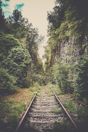forest railroad: Old mystic railroad in a forest. Filtered shot Stock Photo