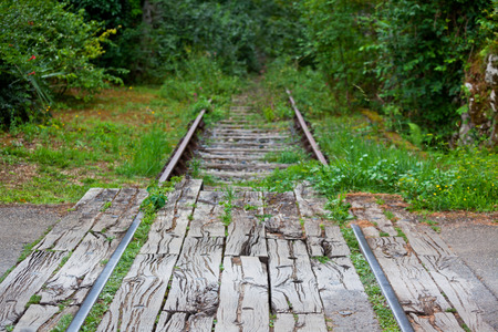 forest railroad: Old overgrown railroad in a forest. Horizontal shot Stock Photo