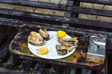 dozen: Half a dozen oysters with a lemon on a plastic plate eating outdoors near the sea