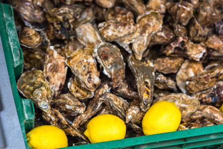 aphrodisiac: Oysters market in Cancale, Brittany, France. Shot with a selective focus Stock Photo