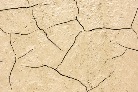low relief: details of a dried cracked earth soil. background