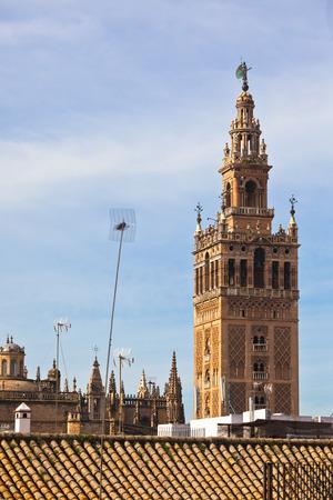 sevilla: Catedral de Sevilla (Catedral de Santa Mar�a de la Sede), Spain and residential roofs