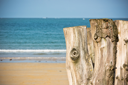 Breakwaters in low tide on seashore Saint malo, Brittany, France