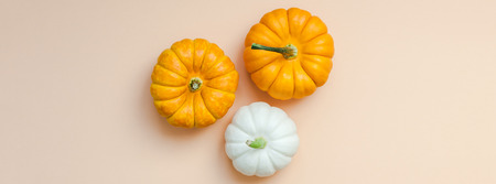 Creative Top view flat lay autumn composition. Frame concept pumpkins color paper background copy space.