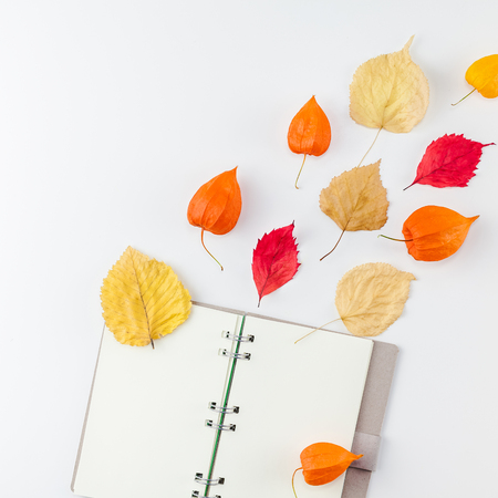 Creative Top view flat lay autumn composition Notebook dried orange flowers leaves background copy space