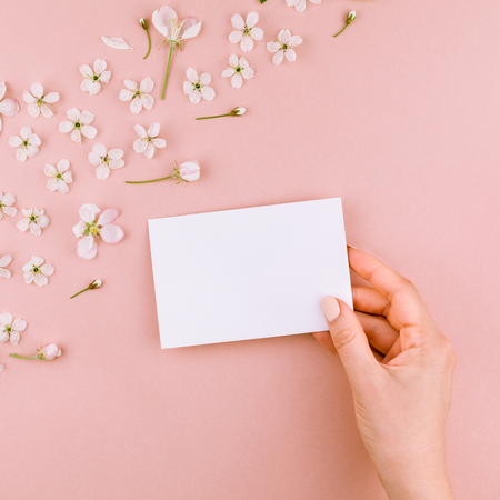 Square flat lay concept top view of blank letter envelope and spring cherry tree flowers on millennial pink background with copy space in minimal style, template for celebration, valentine cards Zdjęcie Seryjne