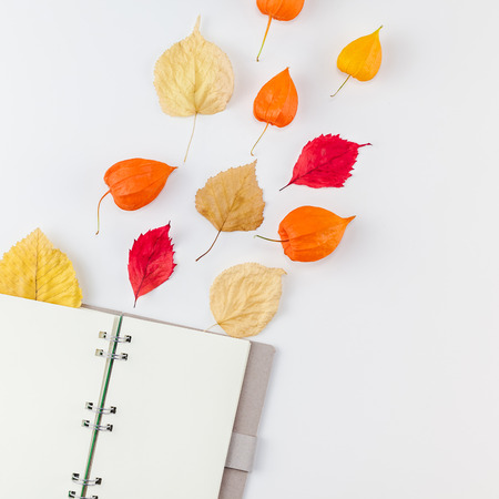 Creative Top view flat lay autumn composition Notebook dried orange flowers leaves background copy space Square Template notepad mockup fall harvest thanksgiving halloween anniversary invitation cards
