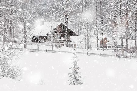 Winter Snowy Bavarian Alpine landscape with snow covered field, house and trees. Magic wintry scenery background at snowfall. Germany, Europe. Monochromatic neutral tones with natural light