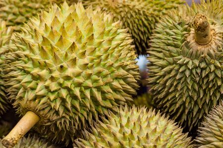 Group of fresh durian fruit in the market