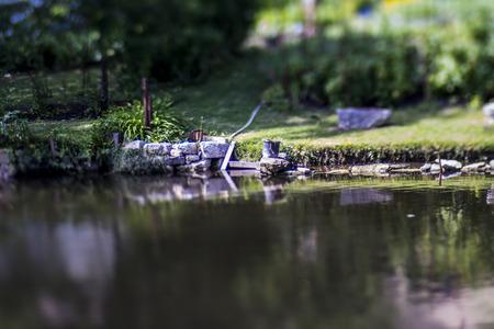 still life of a garden Stock Photo