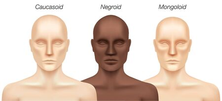 Human races, vector illustration. Set of Caucasian, African and Asian man models isolated on background. Major types of Homo Sapiens racial groups.
