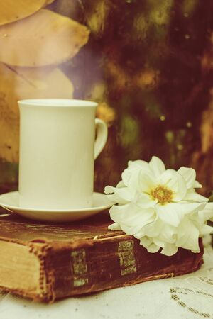 Autumn still life. White cup and flower on the background of the window