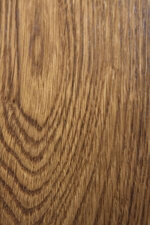 oiled: oak panel in close up Stock Photo