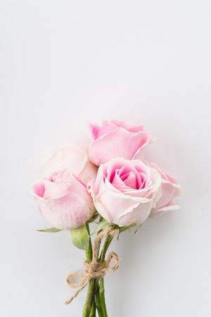 pink and green: white and pink rose bouquet on white background