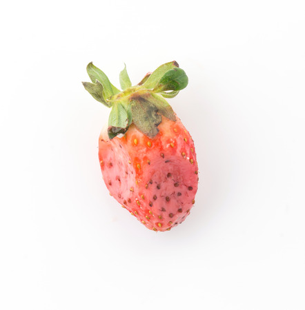 strawberry be moldy on white