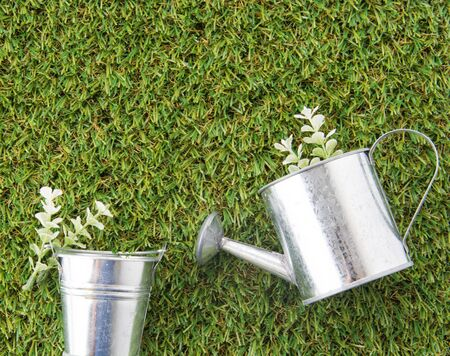 steel bucket: steel bucket, watering can and plant on green grass turf Stock Photo
